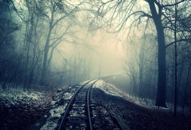 Bleak winterscape